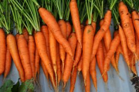 Carrots and cartoons boost consumption
