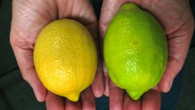 Tesco stocks green lemons after citrus shortage