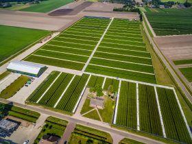 Fall Creek Farm & Nursery buys Driesvenplant