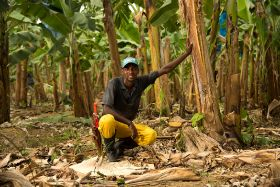 Fyffes recognised for Fairtrade dedication