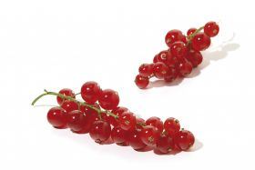 Pack size crucial for redcurrant sales