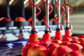 Apple packer to debut