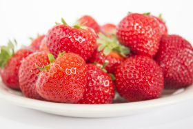Dutch growers release new strawb variety