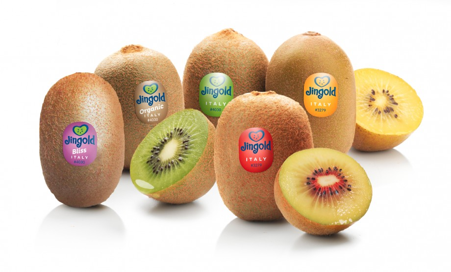 Jingold Ready To Roll Out Red Kiwifruit