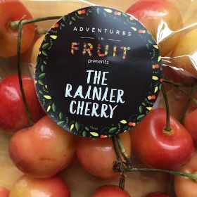 Star quality key to Rainier success