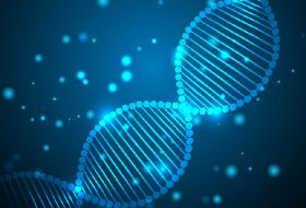 ECJ stands firm on gene editing