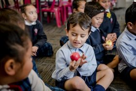 School scheme bears fruit