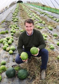 UK melon grower smashes record crop