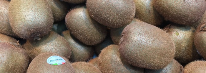 Northern kiwifruit crop around 800,000 tonnes