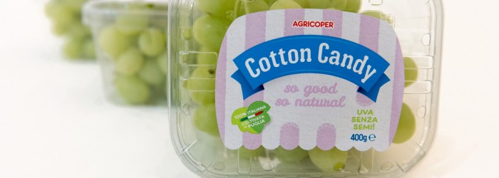 Agricoper extends grape season to half a year
