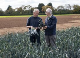 Breeders celebrate 25th anniversary of first hybrid leek