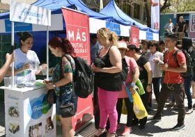 Argentina celebrates Blueberry Week