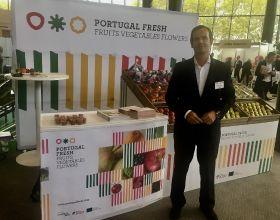 Portugal makes gains in Spain