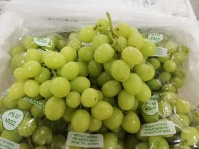 New pathway for Aussie grapes to NZ