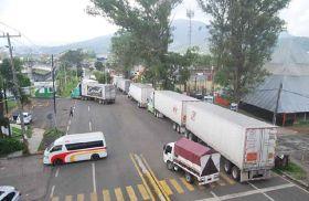 Michoacán avocado growers go on strike