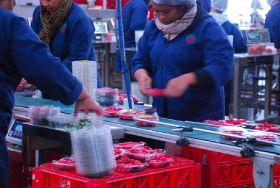 Addressing Australia's labour shortage