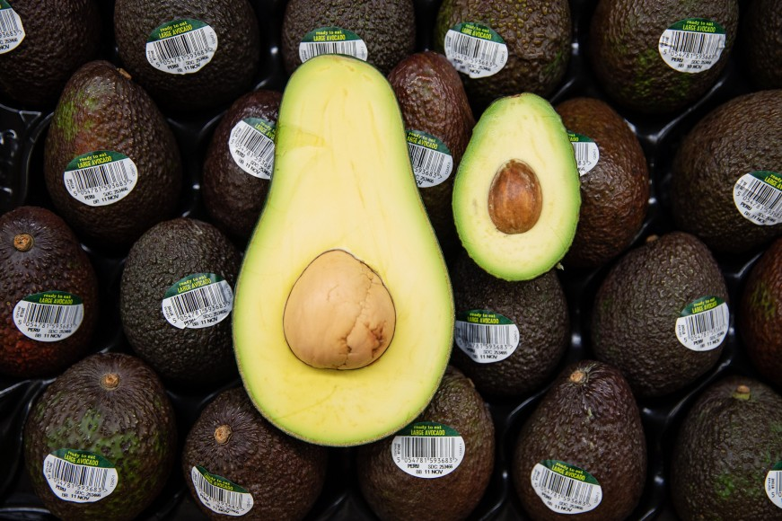a26cfd3423 Asda launches 'giant avocados'