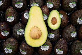 Asda launches 'giant avocados'