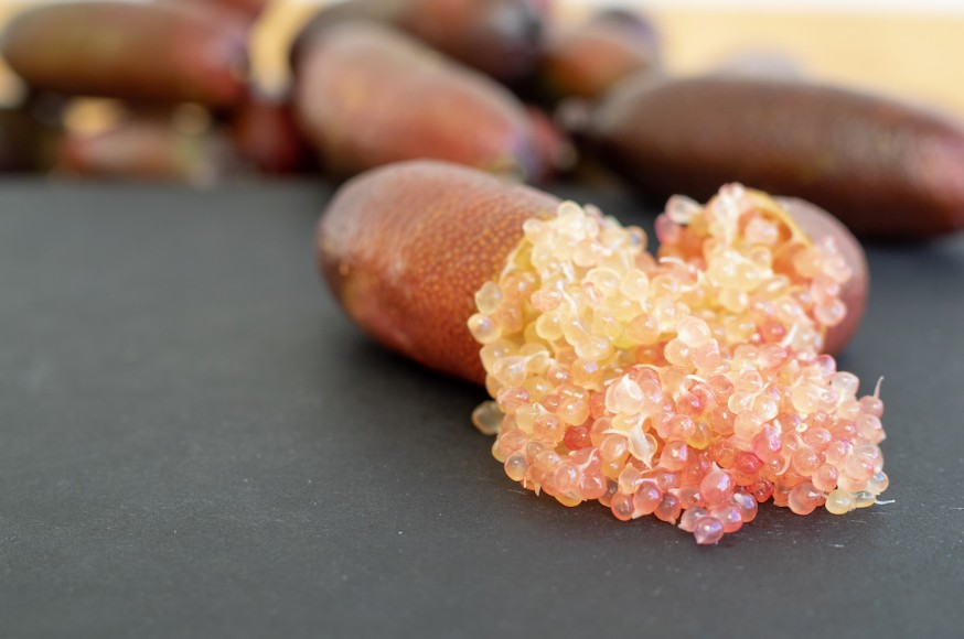 Finger Lime production grows