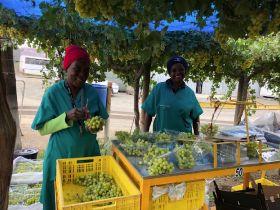 Namibian packing initiatives gain ground