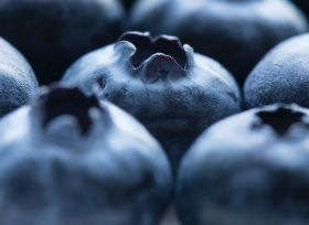 Grasses 'can help grow healthier blueberries'
