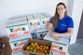 Florida citrus economic contribution stable