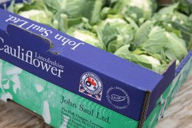 Almost half of UK veg grown to LEAF Marque Standard
