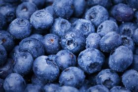 Research highlights blueberry benefits