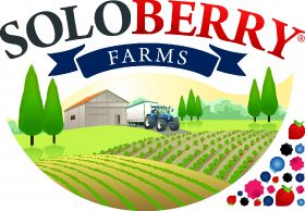 Soloberry launches berry brands in Europe