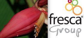 Fresca Group acquires exotics supplier