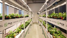 Gagarin invests in iFarm technology