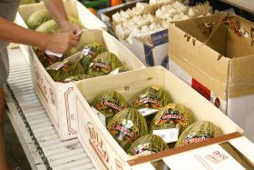 Investors swoop on Spanish produce firms