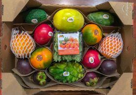 Terra Exports targets tropicals