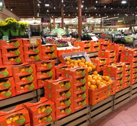 Sumo takes centre stage in US citrus offer