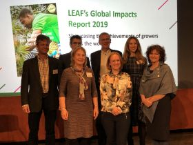 LEAF celebrates Marque expansion