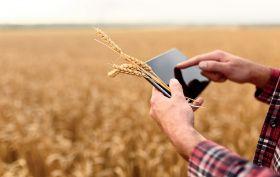 New online market for agri-produce