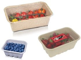 Proseal berry packaging recognised