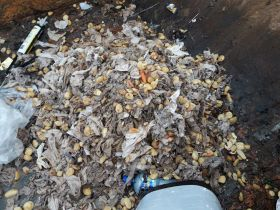Sewage salad has NI Water miffed