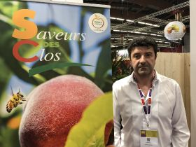France 'struggling to compete' in stonefruit