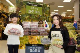 Australian grapes grow in Korea