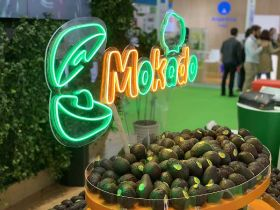 Hurdles in Chinese avocado market