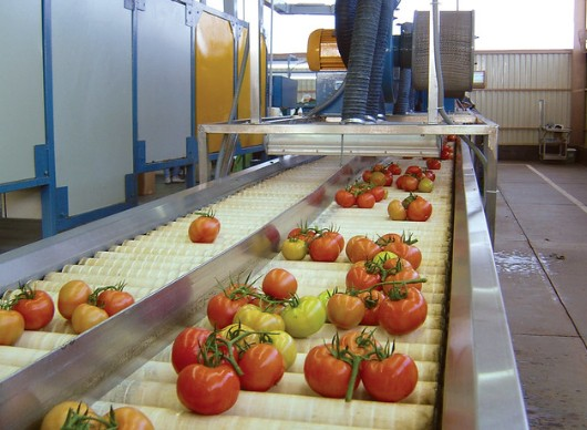 US to impose tariffs on Mexican tomatoes