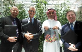 Investments aim for Gulf food security