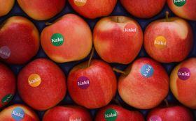 Retail push for Kalei launch