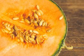 Early volumes for Charentais melons