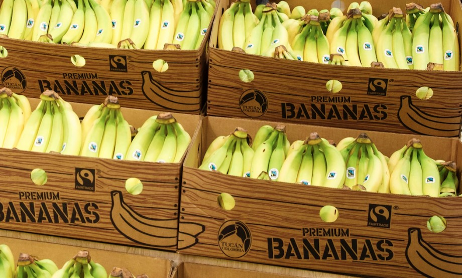 Lidl rethinks switch to Fairtrade bananas