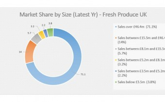Chart - Market Share (latest year). Source - Plimsoll Publishing Limited, Fresh Produce Industry Analysis (April 2019)