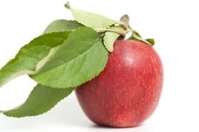An apple a day good for gut health, study finds