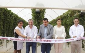 Planasa opens new nursery in Mexico