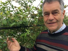 Scottish fruit farm named Strategic SmartHort Centre